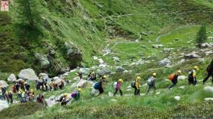 campi elem giugno 2014 - 1401 montagna